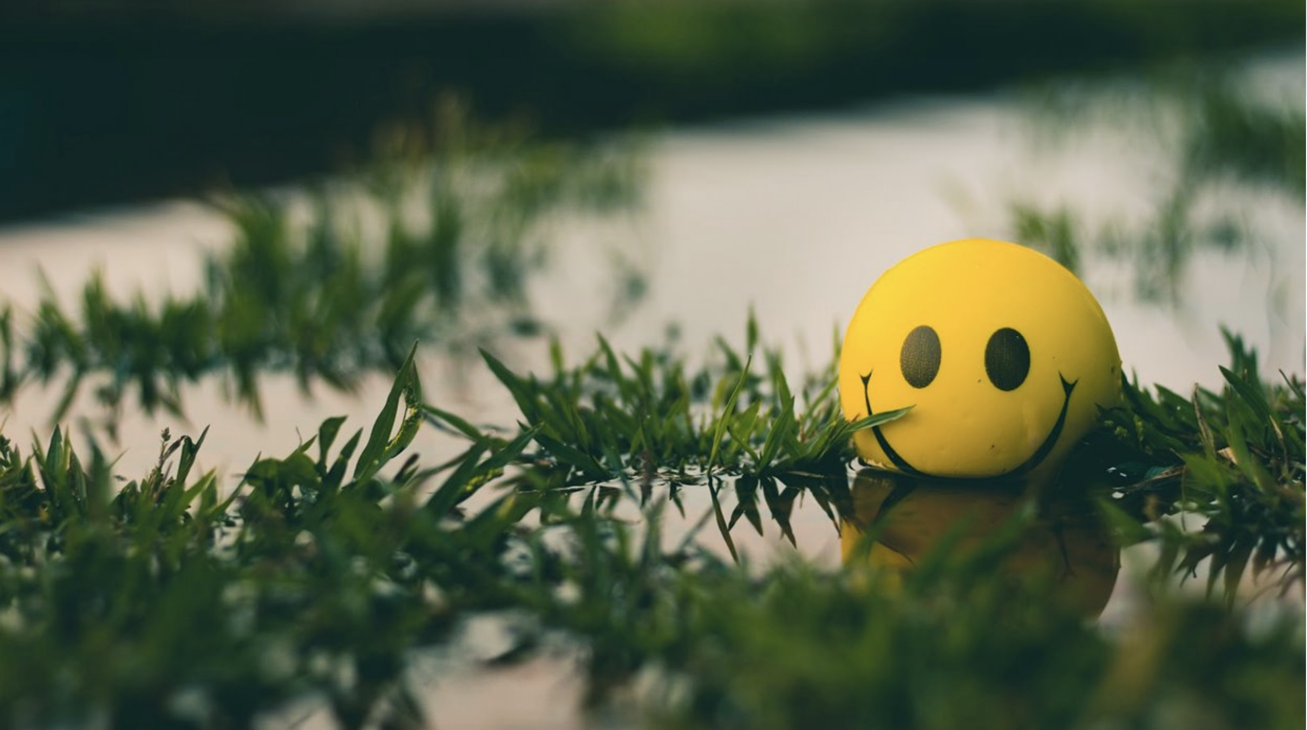 Having a hard time? Optimism is your best bet